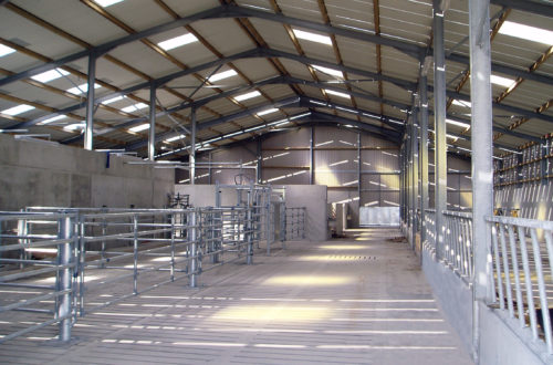 Cattle Housing
